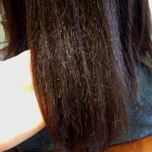 炭化した髪