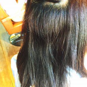 縮毛矯正前 内側