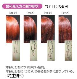 髪の加齢 エイジング毛