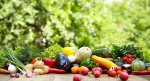 秋野菜 無農薬