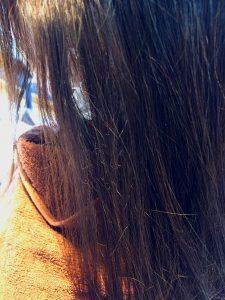 ビビリ毛 修復