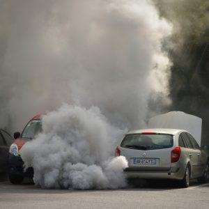 自然志向 大気汚染