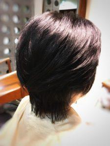 ヘナカラー 藍色 ハリコシ 育毛