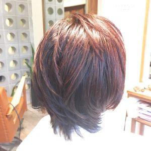 ヘナ 白髪染め オーガニック 天然成分