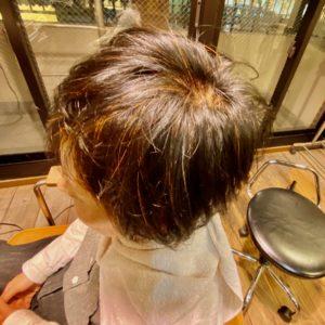 ヘナ 薄毛 育毛